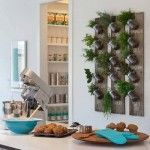 Ideas para cultivar plantas aromáticas decorando la cocina