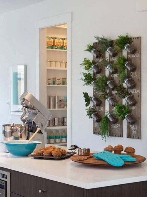 Ideas para cultivar plantas aromáticas decorando la cocina 1