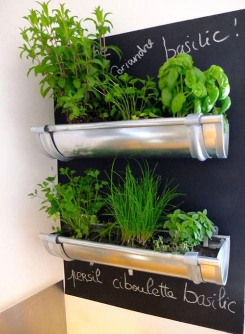 Ideas para cultivar plantas aromáticas decorando la cocina 2
